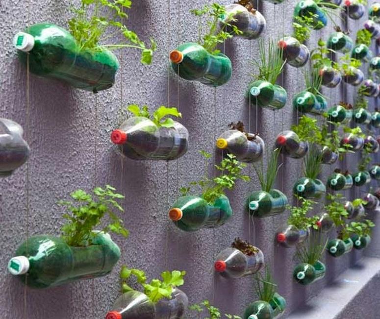 Taman Depan Rumah Minimalis Lahan Sempit 5 Desain Rumah Minimalis
