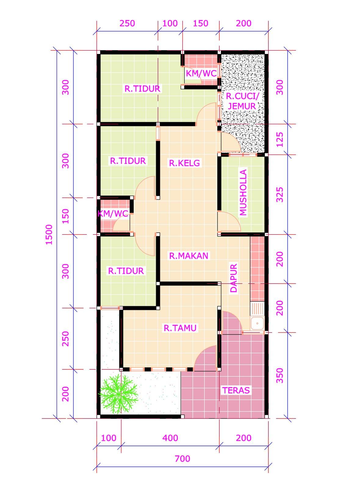 denah rumah 3 kamar ukuran 6x12 terbaru